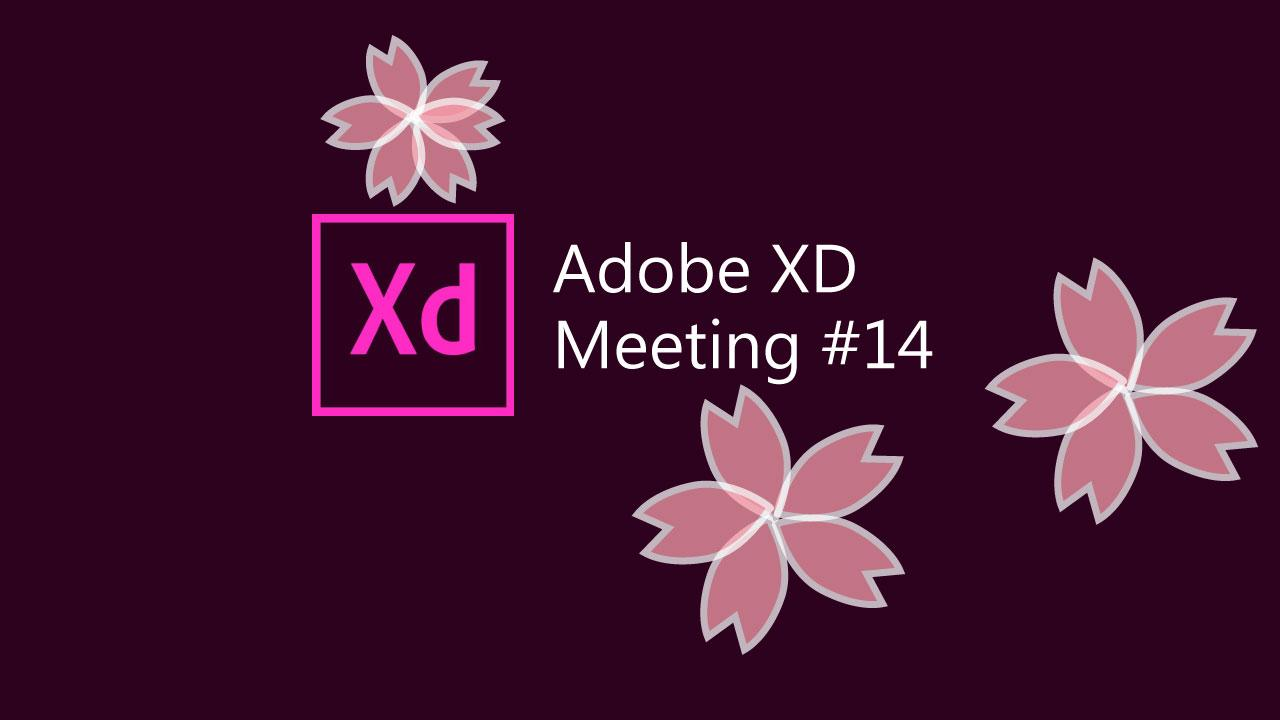 Adobe XD meeting #14