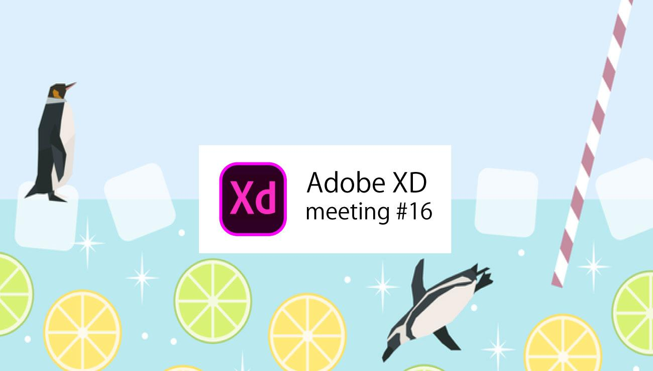 Adobe XD meeting #16